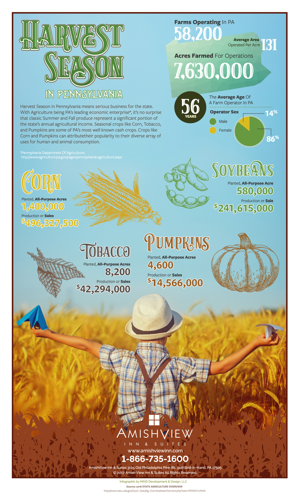 Lancaster County Harvest Infographic